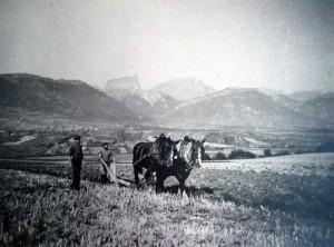 Labour en face du Mt Aiguille
